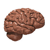 How chocolate effects brain chemicals